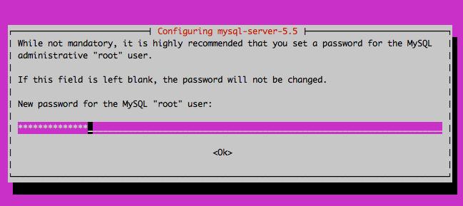 Root Passwort für MySQL Server setzen
