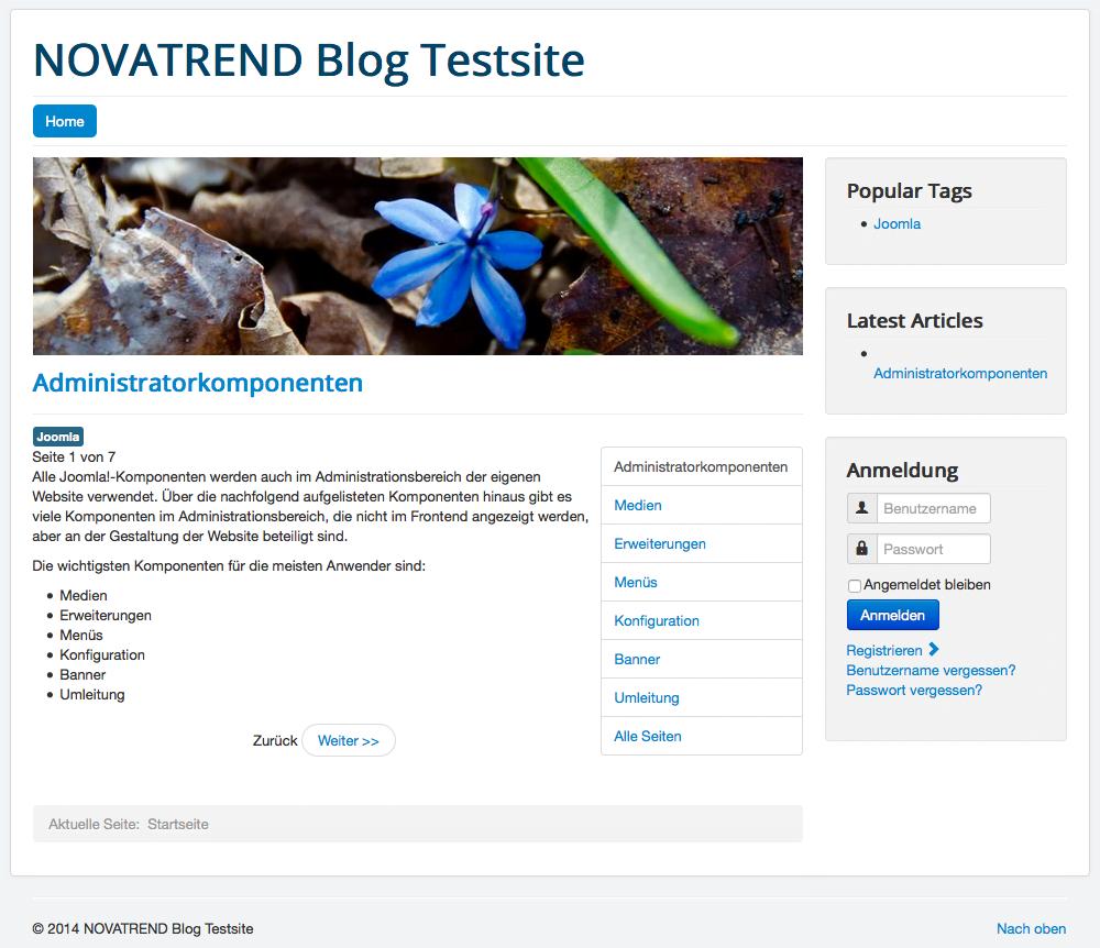 Website mit Beispieldaten