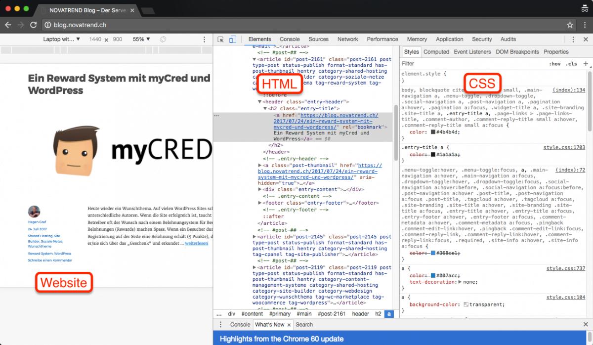 Website Design im Browser untersuchen und testen