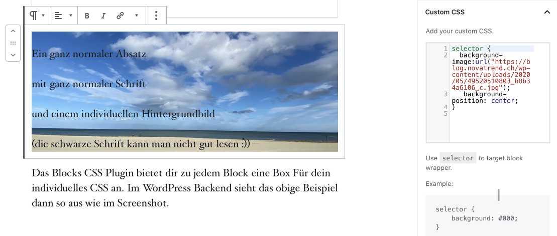 Block CSS - Plugin